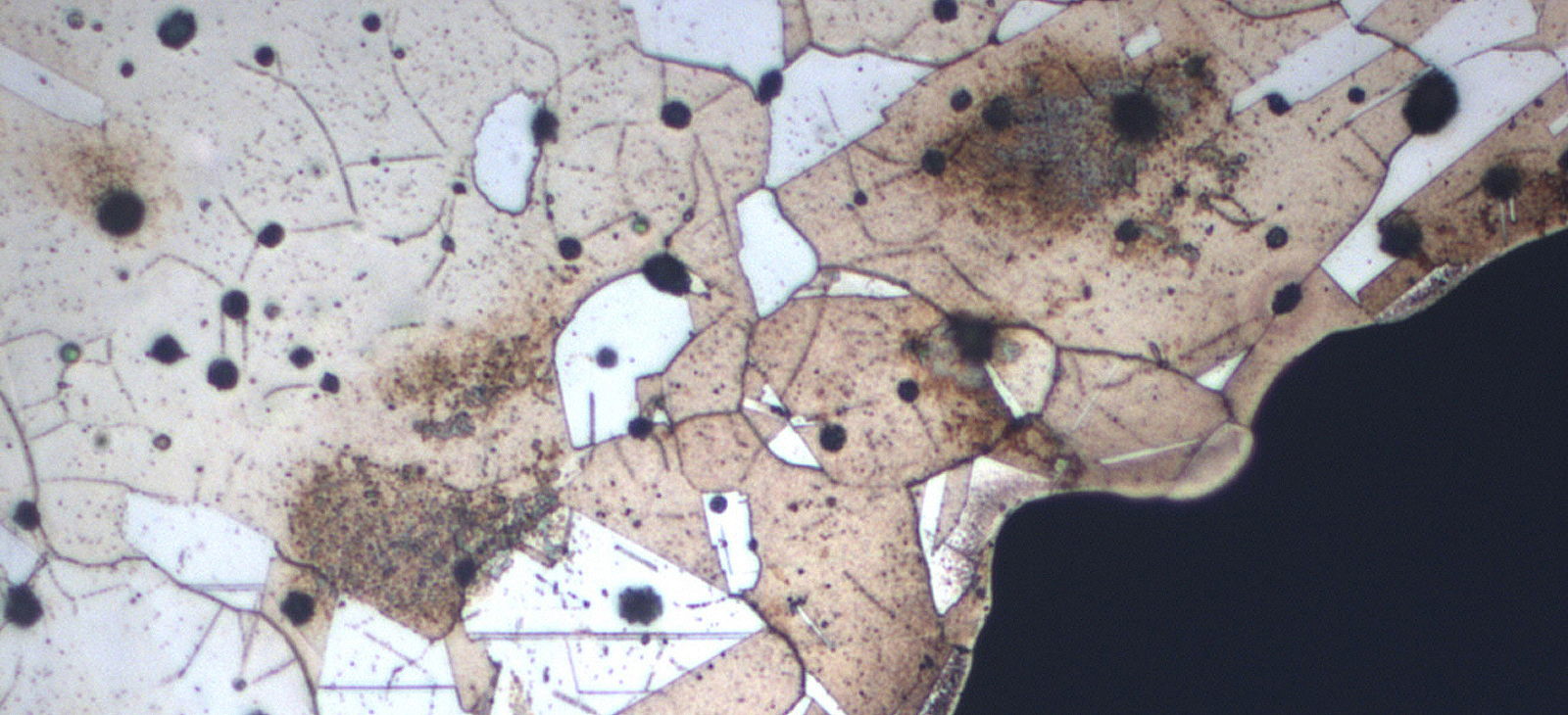 Tansmission Electron Microscopy
