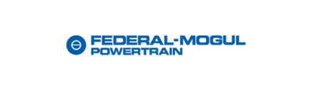 Federal Mogul Powertrain Logo
